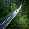 Capilano_Suspension_Bridge_-d