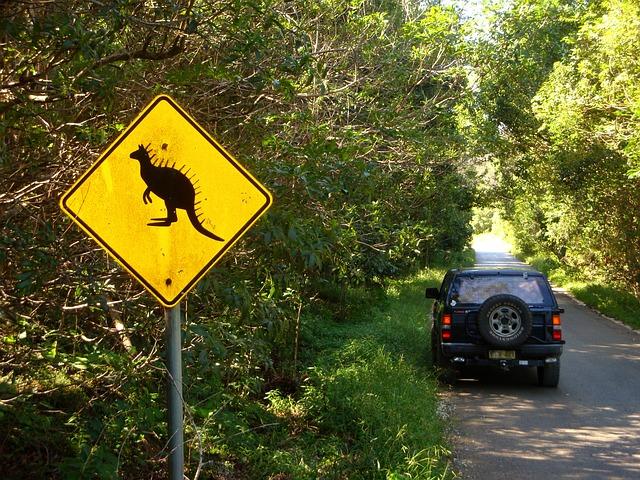 Australia Drive